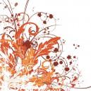 Ornament květiny2